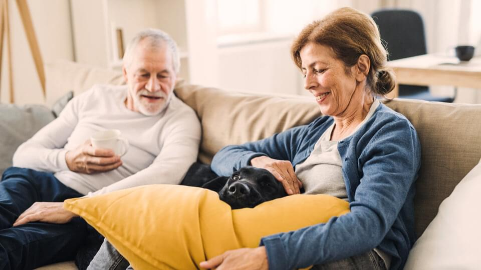 Senior couple sitting on a sofa indoors with a pet dog